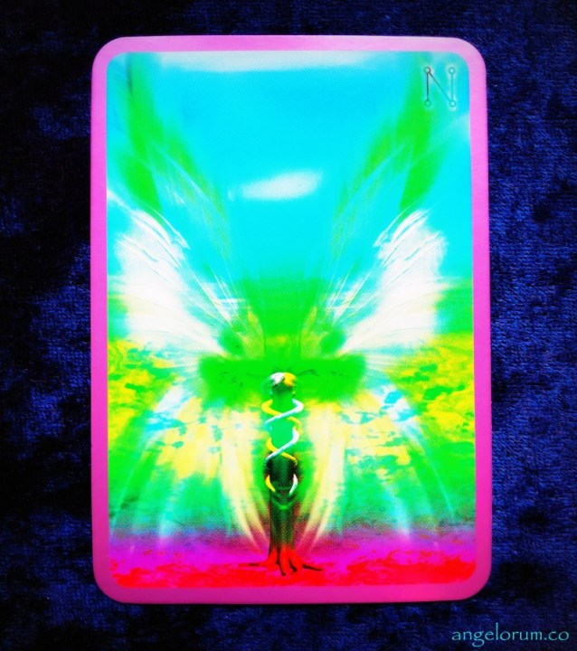A channelled message from Hadraniel for the 8/8 Lionsgate portal. Love & Light oracle card by Angela McGerr.