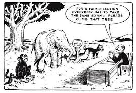 differentiation cartoon