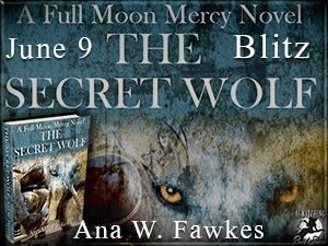 The Secret Wolf Button-Blitz-300 x 225-1