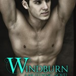 Cover Reveal: Windburn (Nightwing #2) by Juliette Cross