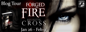 Forged in Fire Banner 851 x 315