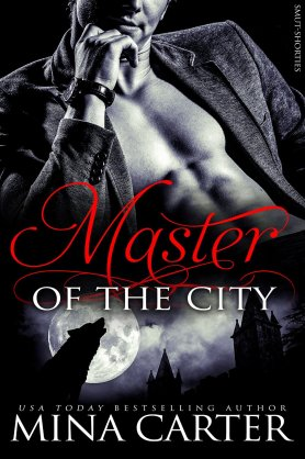 Master of the city MC SM