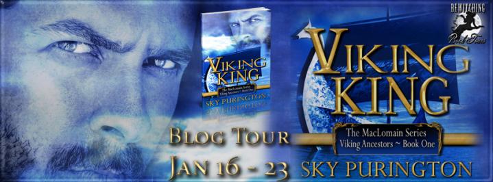 Viking King Banner 851 x 315
