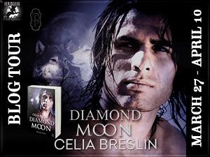 Diamond Moon Button 300 x225