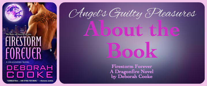 FirestormForever-AbouttheBook-angelsgp