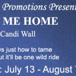 Review: Lead Me Home (Home is Where the Heat Is #2) by Candi Wall {Tour} ~ Excerpt