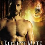 Mini Review: Perfect Mate (Shifters Unbound #4.5) by Jennifer Ashley