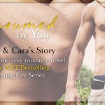 Release Day Blitz: Consumed by You (Fighting Fire #3) by Lauren Blakely ~ Excerpt