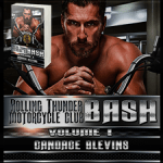 Bash, Volume I (Rolling Thunder Motorcycle Club #3) by Candace Blevins {Tour} ~ Excerpt