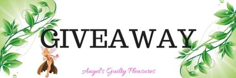 Giveaway-Banner00-angelsgp