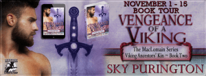 vengeance-of-a-viking-banner-851-x-315