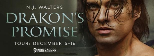 drakons-promise-tour-banner