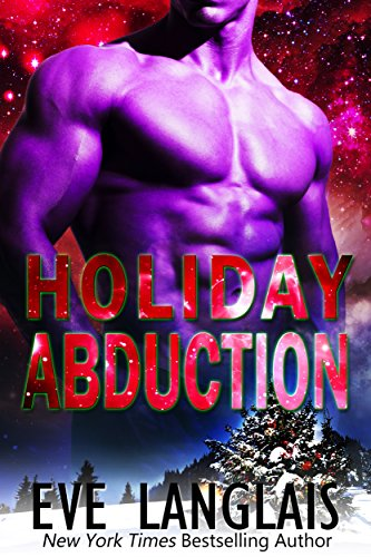 Holiday Abduction Book Cover