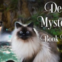 Destiny Falls Mystery & Magic Series by Elizabeth Pantley ~ #BookTour #Excerpt #Giveaway