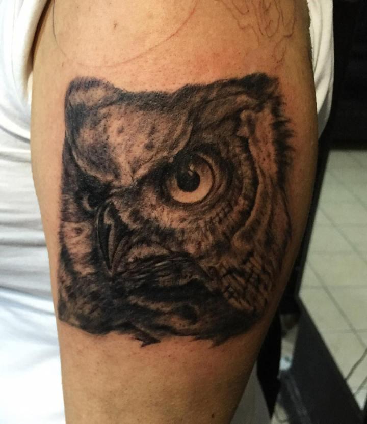 #owltattoo #comingsoon #tattoo #dovme #dovmesanati #dövme #tattooturkiye  #tatto…