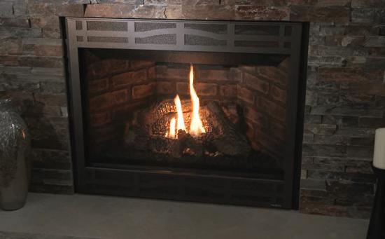 Enviro Ex Series Gas Fireplace Insert Angerstein S Builder S