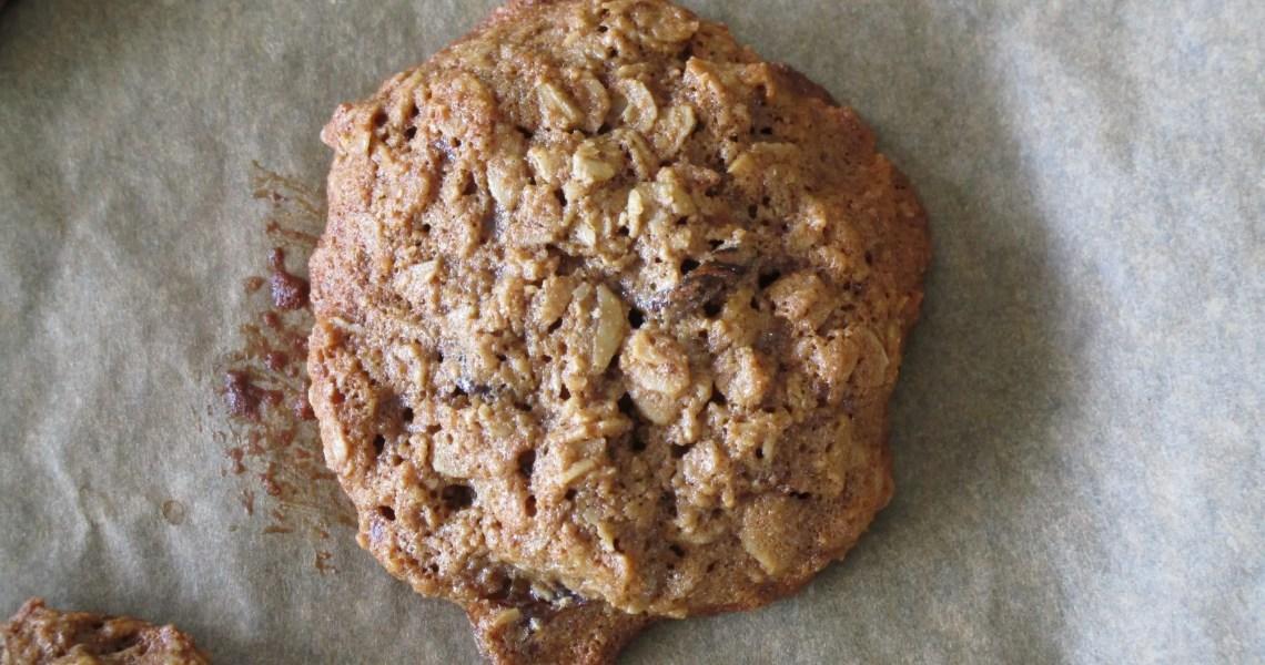 close up oatmeal raisin