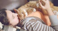 人生のパートナー、ソロ女子がペットを飼う前に知っておきたい3つのこと