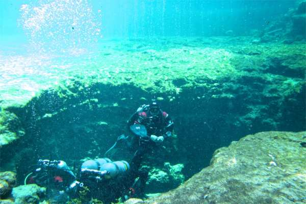 Watching divers as they explore the springs