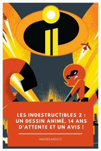 Epingle Pinterest pour mon article sur les indestructibles