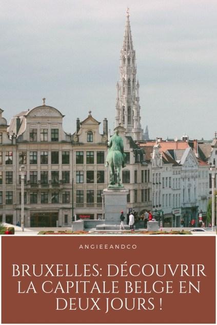 Epingle Pinterest pour mon article sur Bruxelles