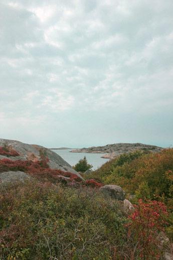 réserve naturelle de Vrångö