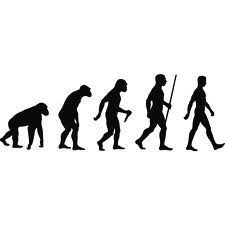 The Evolution of Man Silhouette
