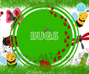 bugs insects