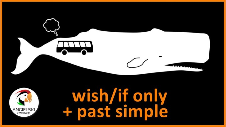 WISH IF ONLY PAST SIMPLE