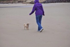 Sunday Beach Trip - Wind and Rain (26)