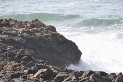 Tuesday Walk & Beach at Devil's Churn (24)