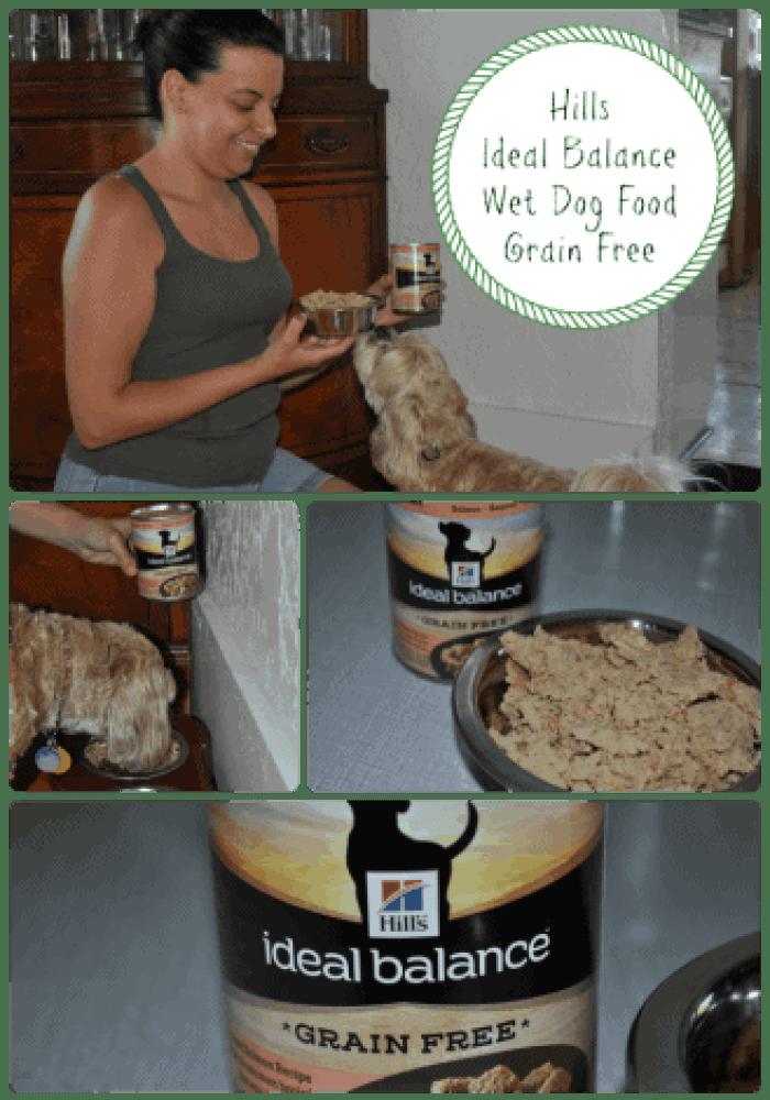 Ideal Balance Wet Dog Food - Grain Free