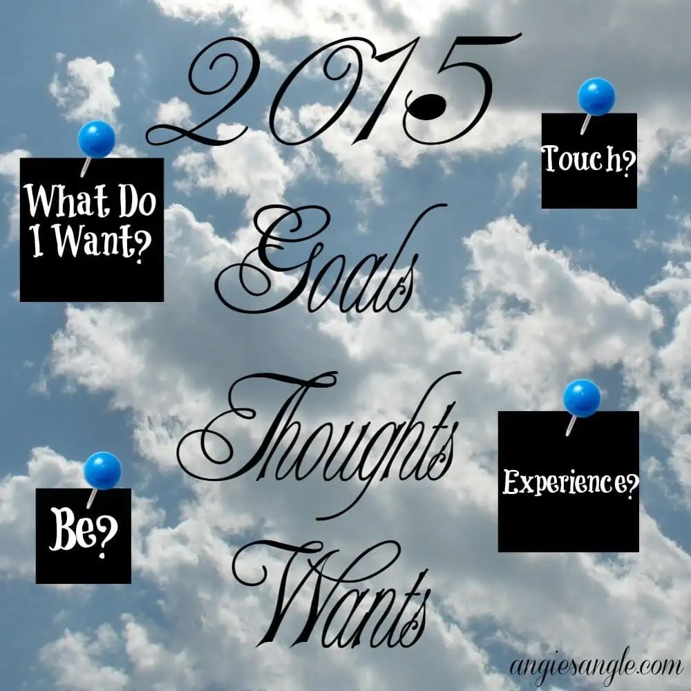 2015 Personal Goals, Thoughts, and Wants