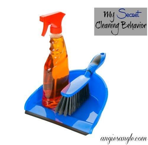 My Secret Cleaning Behavior