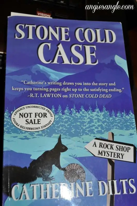 Catch the Moment 365 - Day 224 - Stone Cold Case Book
