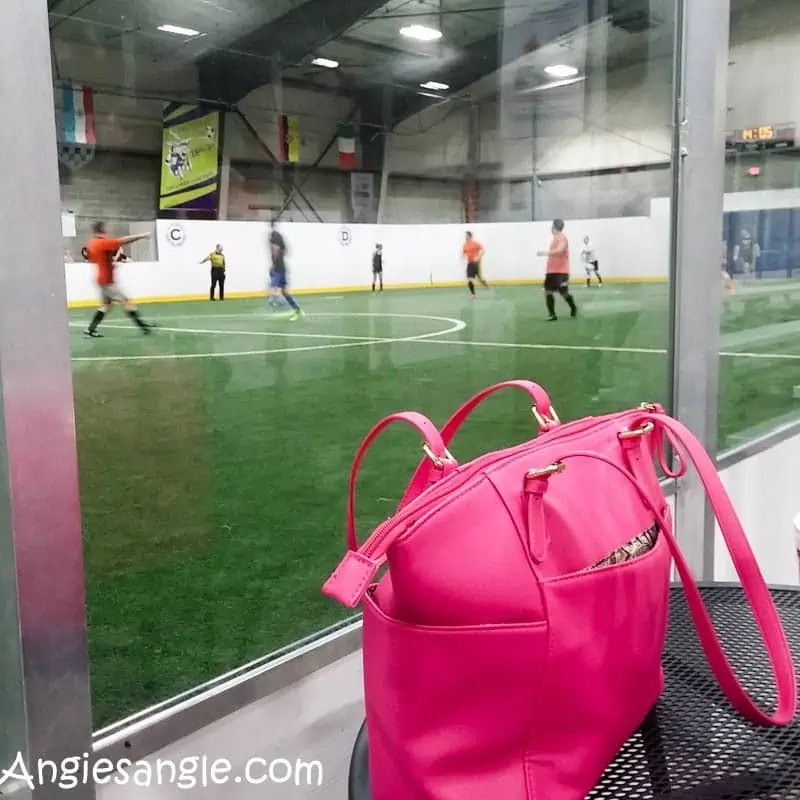 Catch the Moment 366 Week 5 - Day 29 - Purse with Indoor Soccer