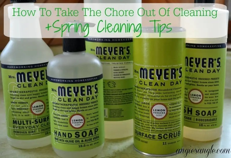 How To Take The Chore Out Of Cleaning +Spring Cleaning Tips