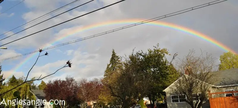 catch-the-moment-366-week-42-day-290-rainbow
