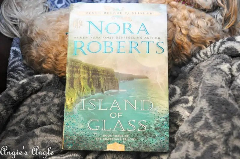 2017 Catch the Moment 365 Week 10 - Day 67 - Current Book Nora Roberts