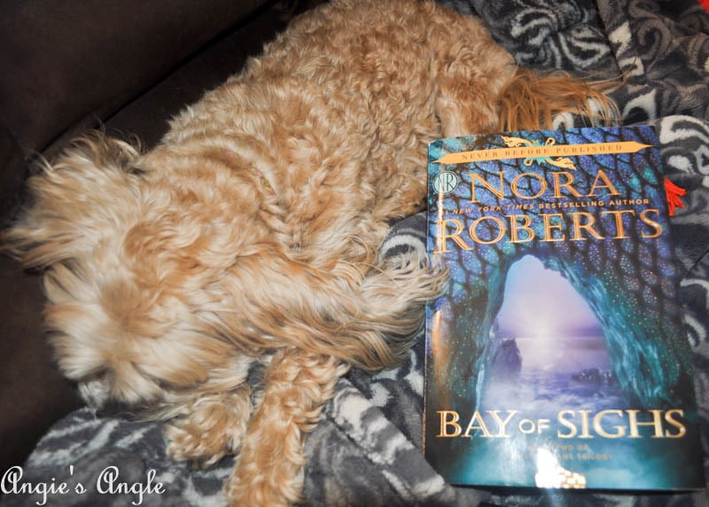 2017 Catch the Moment 365 Week 9 - Day 59 - Current Book and Sleepy Roxy