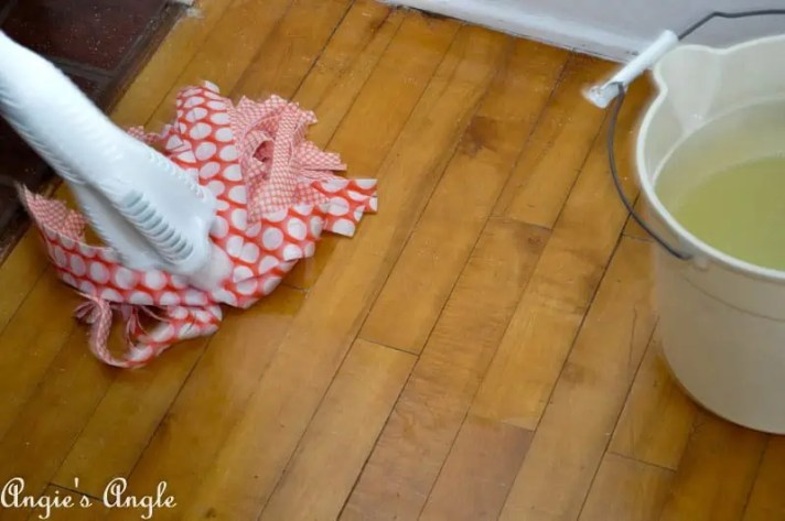 Spring Cleaning with Libman-6