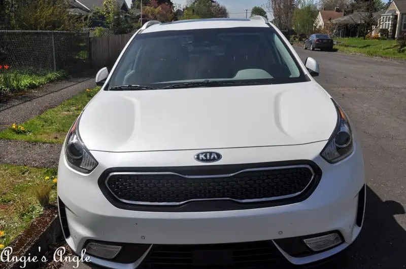 New Kia Niro (15 of 22)