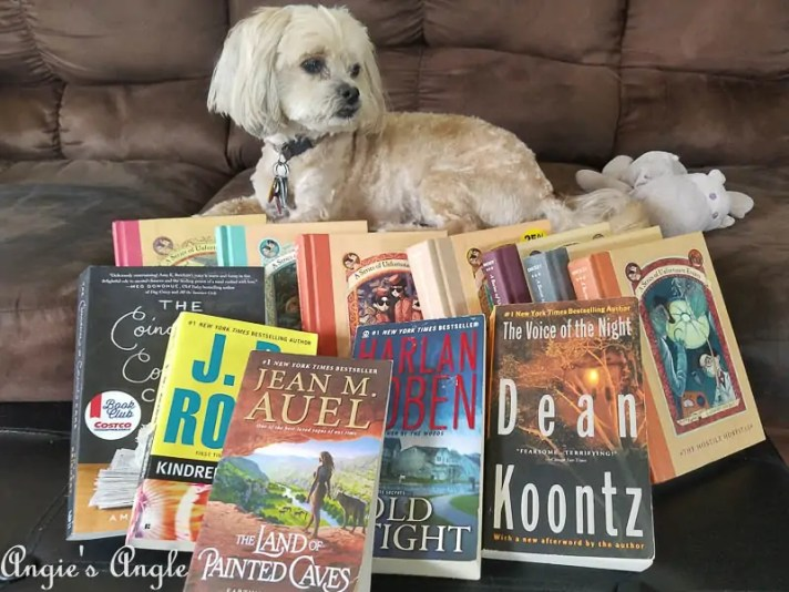 2017 Catch the Moment 365 Week 26 - Day 179 - Book Finds and Roxy