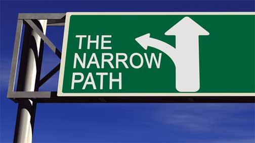 The-Narrow-Path