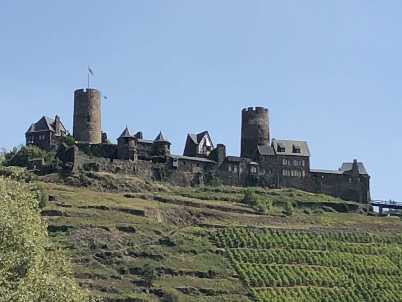 Castle on Mosel cruise, Ruin