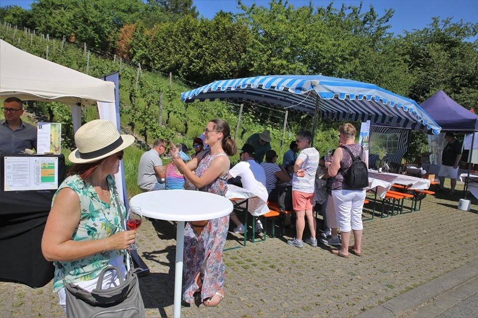 Winewalk, Weinwanderung