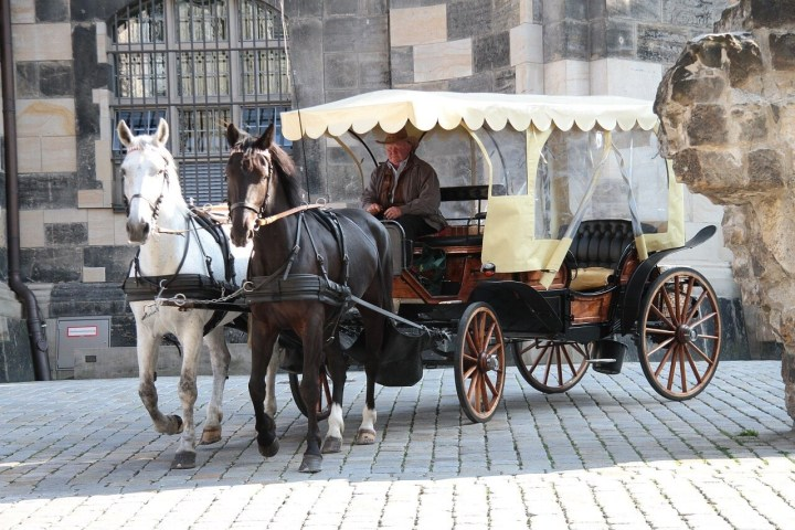 Horse Carriage in Dresden