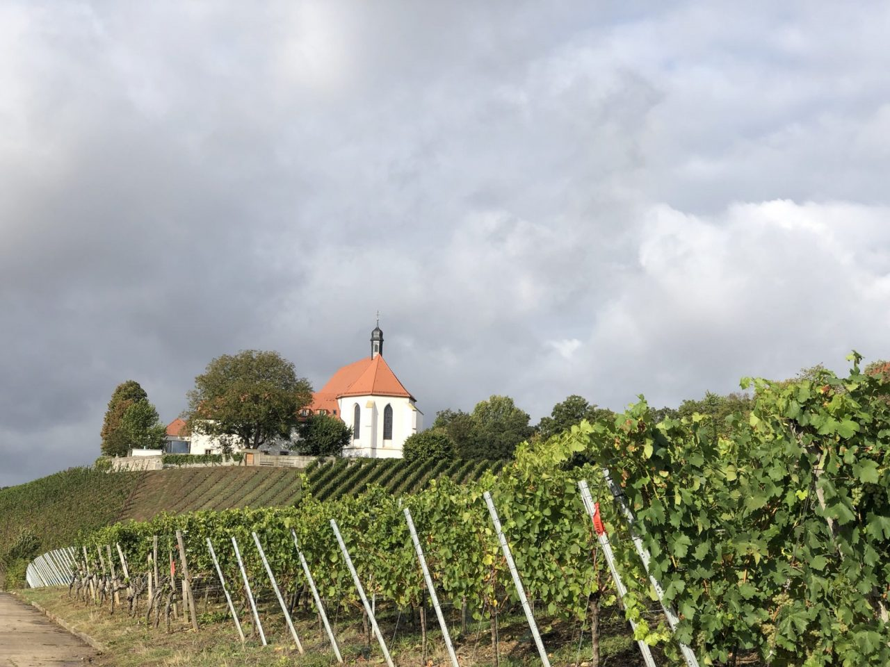 Volkach Wine country Franconia