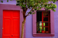 Which house is painted in the most vivid colors?