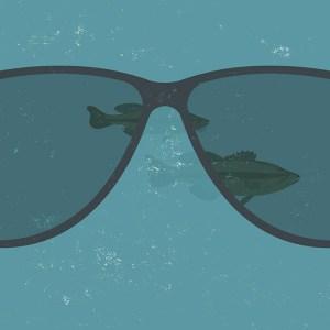bass fishing polarized sunglasses tips